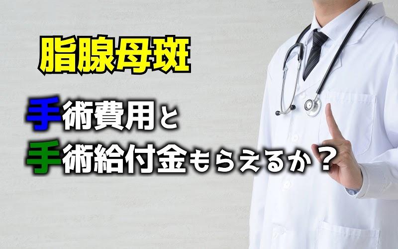 脂腺母斑の切除手術費用は?また保険適用になるのか?実体験で解説
