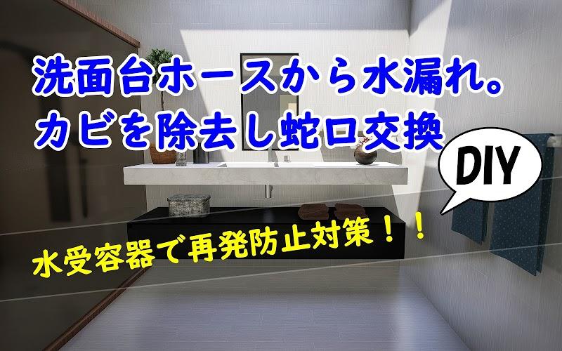 洗面台のシャワーホースから水漏れ。カビを除去し蛇口交換【DIY】